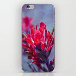 Indian Paintbrush Groovy Wildflower iPhone Skin