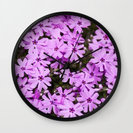 Pink Phlox Wall Clock