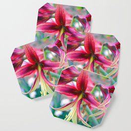 Flowers of Pink Coaster
