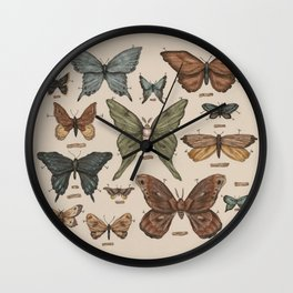 Butterflies and Moth Specimens Wall Clock
