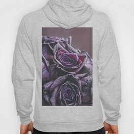 Macro photography of purple roses with raindrops. Fantasy and magic concept. Selective focus. Hoody
