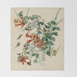 Vintage Hummingbird Illustration - Birds of America Throw Blanket