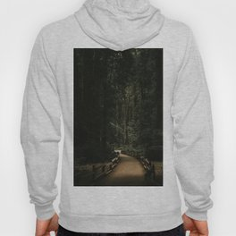 Trail Through Redwood Forest Hoody