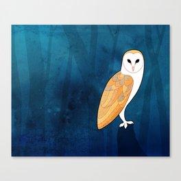 Barn owl (Tyto alba) Canvas Print
