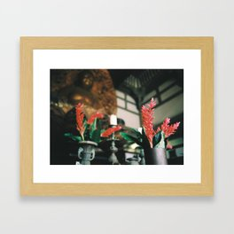 Spiritual Temple  Framed Art Print