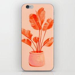 Coral Banana Plant iPhone Skin