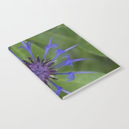 Thin blue flames in a sea of green Notebook