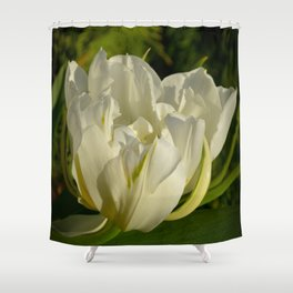 Double White Tulip by Teresa Thompson Shower Curtain