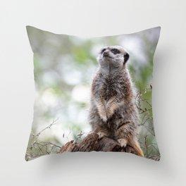 Meerkat on guard duty Throw Pillow