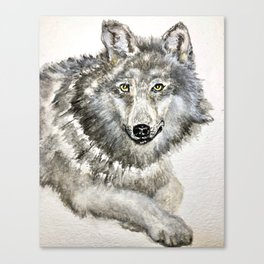 Majestic winter wolf; is she smiling or about to bite? cute animals Canvas Print