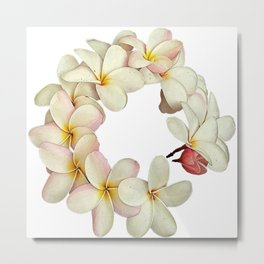 Plumeria Tropical Flower Garland Metal Print