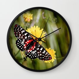 A Red Dotted Checkerspot Wall Clock