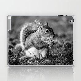 Squirrel Conquer Laptop & iPad Skin