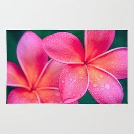 Aloha Hawaii Kalama O Nei Pink Tropical Plumeria Rug