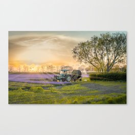 Dutch farmland Canvas Print
