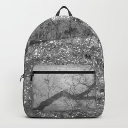 Tree Reflection Backpack