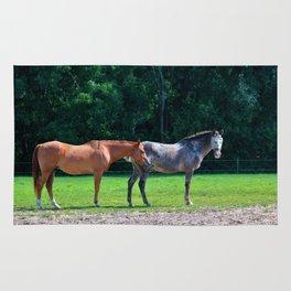 Pasture Friends Rug