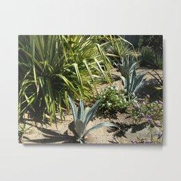 Cooper Island, Brittish Virgin Islands, Tropical Plants Metal Print