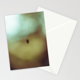 Spider Stationery Cards