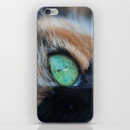 Cats eye iPhone Skin