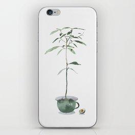 Avocado Tree iPhone Skin