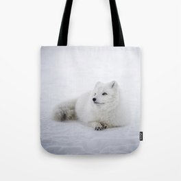 White snow arctic fox Tote Bag