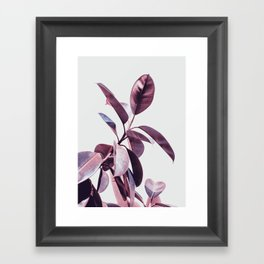 plant55 Framed Art Print