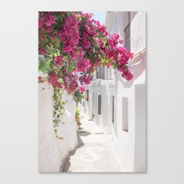 White washed Canvas Print
