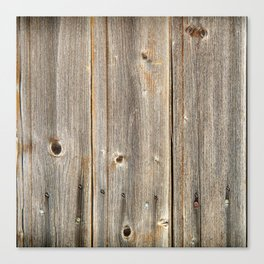 Old Rustic Wood Texture Canvas Print