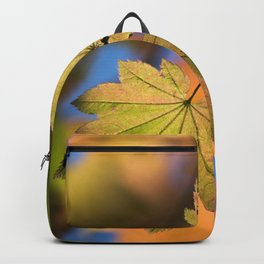 In The Fall / 5 Backpack