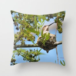 Hanging Out Over B Street Throw Pillow