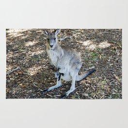 Eastern Grey Kangaroo with Joey Rug