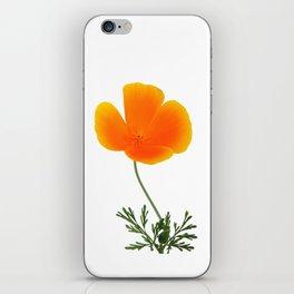 orange poppy iPhone Skin