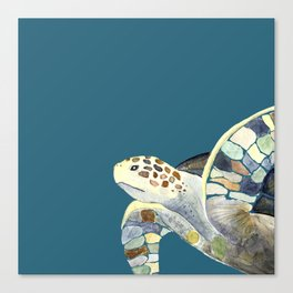 Watercolor sea turtle with teal background Canvas Print