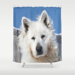 White Husky Shower Curtain