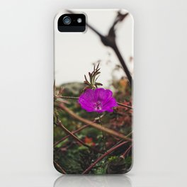 Lonely flower of Naszály mountain iPhone Case