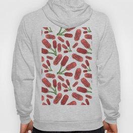 Australian Native Flowers - Decorative Ginger Hoody