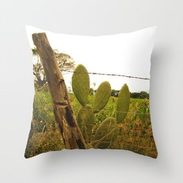 Explorando los campos de caña Throw Pillow