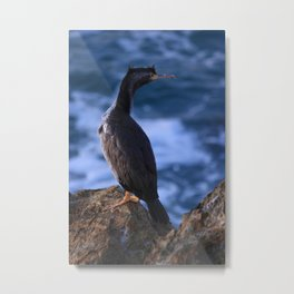 "'Morning Shag"" Metal Print"