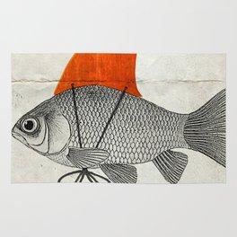 Goldfish with a Shark Fin Rug