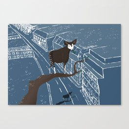 Solo travel - Okapi Canvas Print