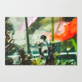 At the Conservatory Canvas Print