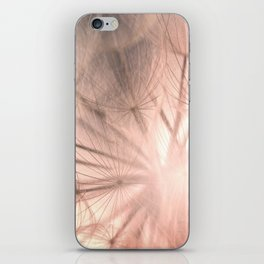 Pink Dandelion Macro Nature Photography Art and Apparel iPhone Skin