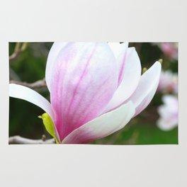 Sweet Magnolia In Springtime Rug