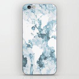 Design 103 World Map iPhone Skin