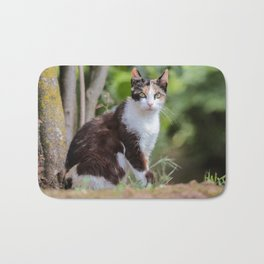 Are you meowing to me? Bath Mat