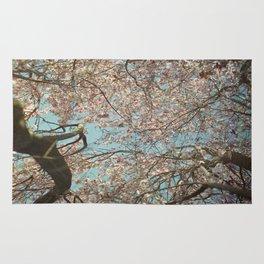 Springtime Sky Rug