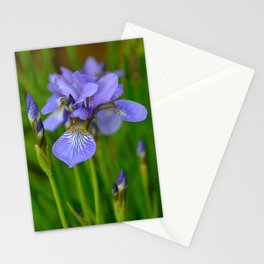 Siberian Iris by Teresa Thompson Stationery Cards