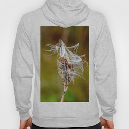 Time to Seed by Teresa Thompson Hoody
