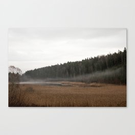 Foggy lake in the woods Canvas Print